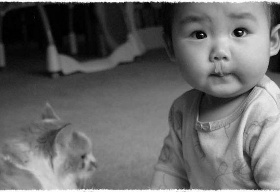 יומני הנסיך - גם תינוק בן שנה צריך לבקש סליחה מההורים